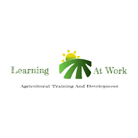 learning-at-work